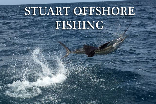Stuart Florida Offshore Fishing
