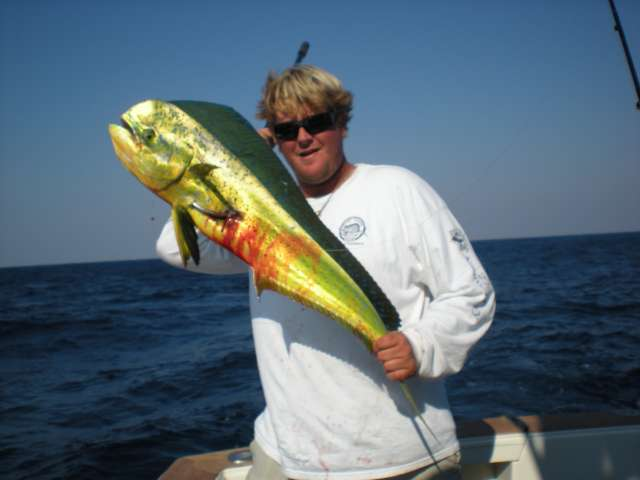 south florida sport fishing deep sea fishing photos
