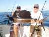 Barry W's Sailfish