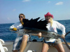 Kelly's February Sailfish