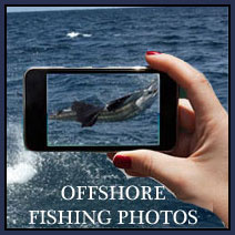 Offshore fishing photos