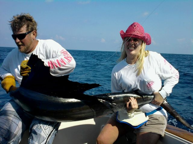 Another February Sailfish